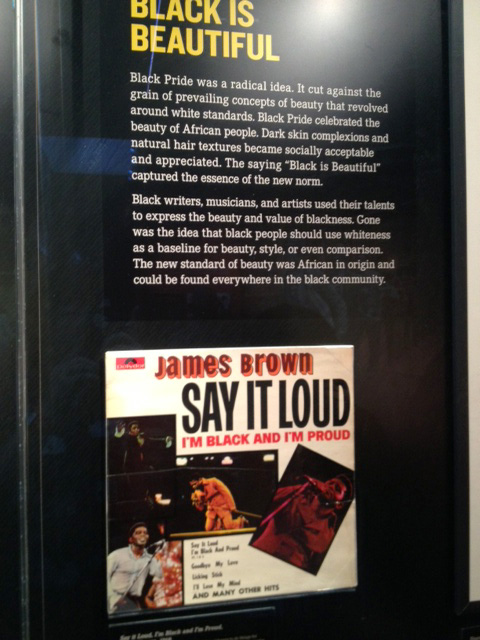 メンフィス国立公民権博物館に飾られているJames Brown『Say it Loud』
