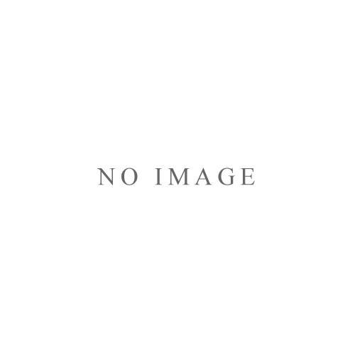パノラマ虚構ゼノン『XENON BEST SELECTION』